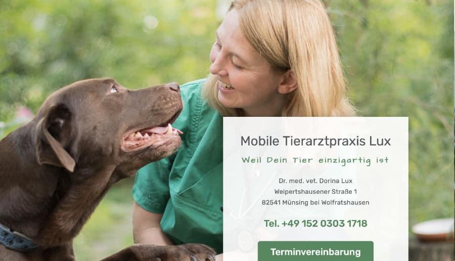 Dorina Lux Tierärztin - ganzVORNE Kunden - Online Marketing Beratung und Webseiten München und Starnberg